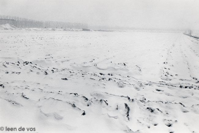Gemiddeld 1 miljoen foto's per fotograaf tijdens de Olympische winterspelen