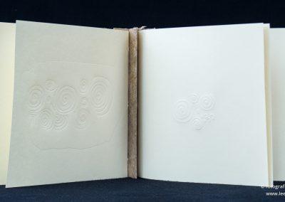 Boek: Newgrange