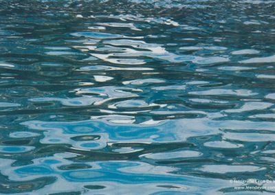 De poëzie van water